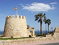Torrevieja forums - The forums for the Costa Blanca